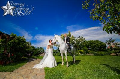 Starway Wedding Agency